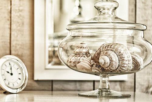 Shell image 500